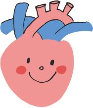 心臓超音波検査